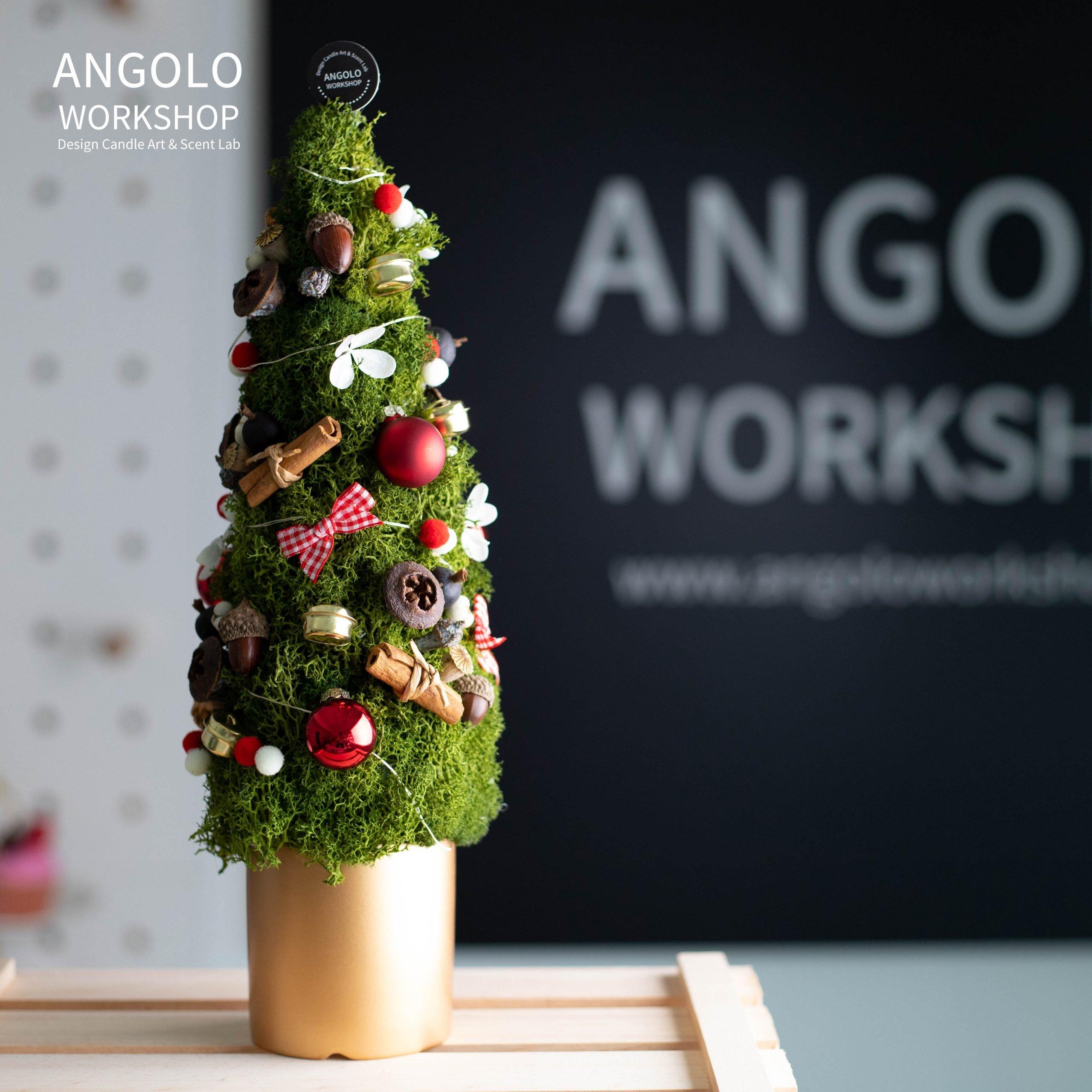 保鮮花聖誕樹工作坊 Preserved Flowers Christmas Tree Workshop (已完結)